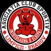 Asociatia Sportiva Limpicii Brasov